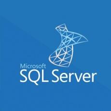 SQLSvrStdCore 2019 OLP 2Lic NL Gov CoreLic Qlfd